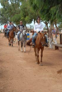 Balade cheval 4